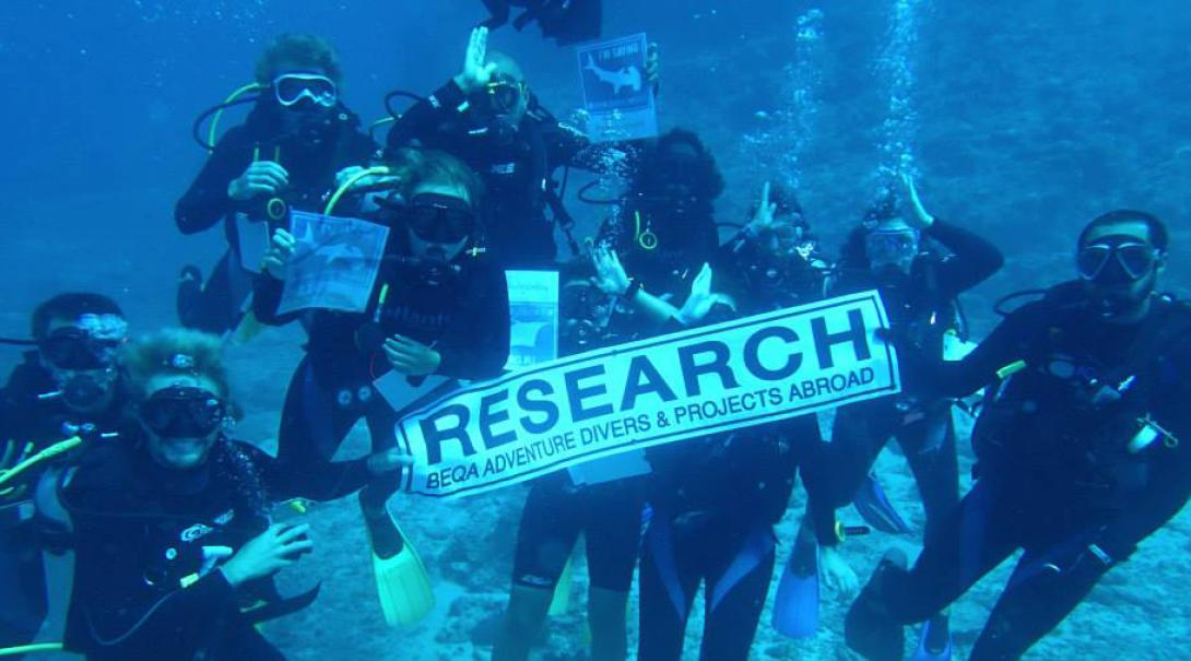 Shark Conservation volunteers hold up a research sign during their survey dive in Fiji.